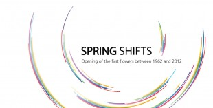 Springshift Headergrafik